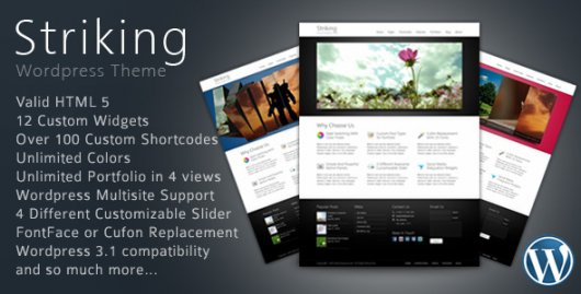 Striking – тема WordPress от ThemeForest